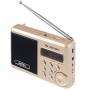 Радиоприемник PERFEO SOUND RANGER PF-SV922 золотой